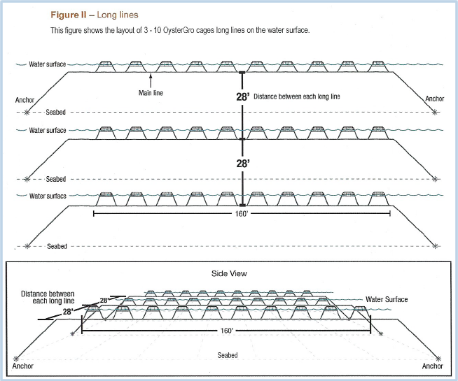 Floating Oyster Plot layout diagram
